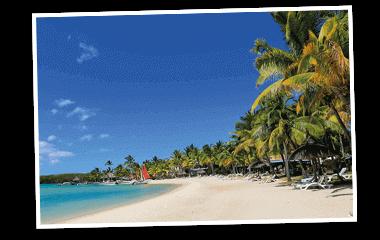 NKL Gewinn Traumreise Strand mit Palmen 380x240