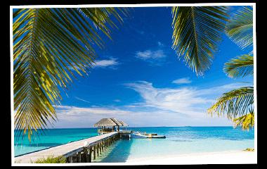 Strand mit Palmen 380x240